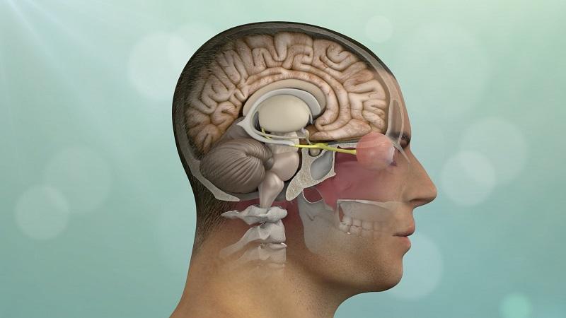 جراحی مغز