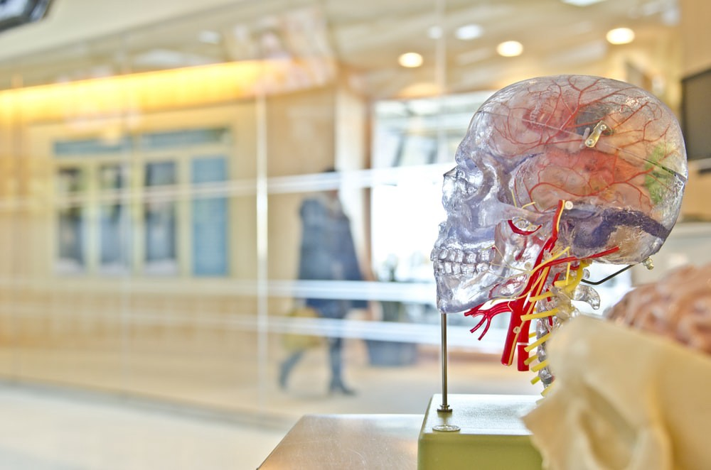 آیا متاستاز سرطان مغز درمان دارد؟